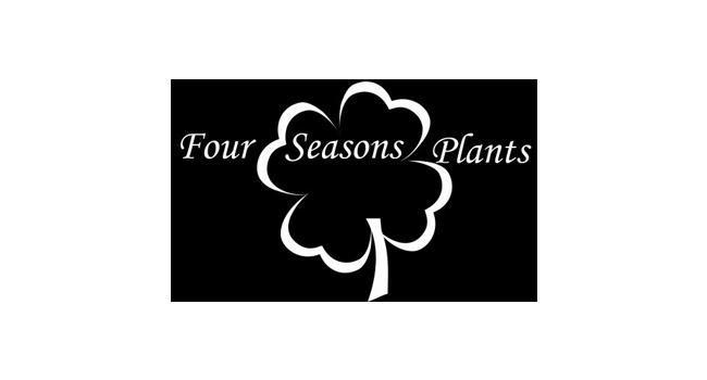 Four Seasons Plants